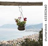 flowers pot hanging in...   Shutterstock . vector #633302660