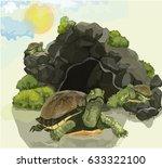 Three Large Turtles On The...