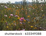 a field of wild flowers  with... | Shutterstock . vector #633349388