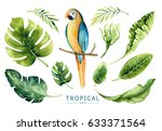 hand drawn watercolor tropical... | Shutterstock . vector #633371564