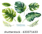 hand drawn watercolor tropical... | Shutterstock . vector #633371633