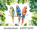 hand drawn watercolor tropical...   Shutterstock . vector #633371690