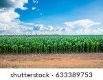 Region Of Sorisso   Mato Grosso ...