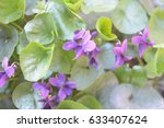 Natural Background Flowers ...