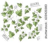 set illustration with ivy | Shutterstock .eps vector #633420383