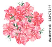 rhododendron  beautiful flowers ... | Shutterstock . vector #633478349