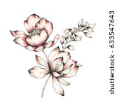 Stock photo watercolor flower illustration 633547643