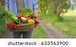 basket with vegetables  cabbage ...   Shutterstock . vector #633563900