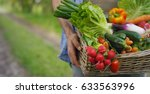 basket with vegetables  cabbage ... | Shutterstock . vector #633563996