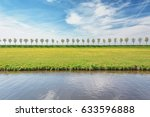 Dike With A Row Of Trees In Th...