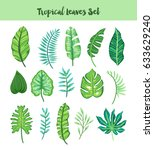 isolated hand drawn tropical... | Shutterstock .eps vector #633629240