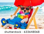 jack russel dog resting and... | Shutterstock . vector #633648068