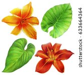 Stock photo beautiful exotic flowers and leaves drawing daylily and greenery 633664364