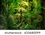 lush green foliage in tropical... | Shutterstock . vector #633680099