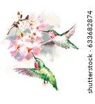 watercolor birds hummingbirds... | Shutterstock . vector #633682874