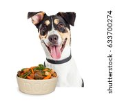happy smiling dog with bowl of... | Shutterstock . vector #633700274