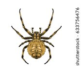 a spider with spots on the back ... | Shutterstock .eps vector #633756476