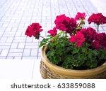 pink garden geranium flowers in ... | Shutterstock . vector #633859088