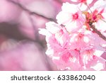 cherry blossoms around kofu... | Shutterstock . vector #633862040
