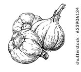 garlic hand drawn vector... | Shutterstock .eps vector #633906134