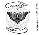 human hands hold a moth the... | Shutterstock .eps vector #633911900