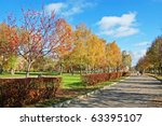 lawn in city square | Shutterstock . vector #63395107
