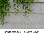 leaf on wall | Shutterstock . vector #633958334