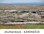 piles of driftwood collect on...