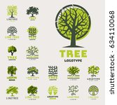 tree vector logotype oak... | Shutterstock .eps vector #634110068
