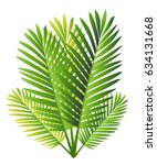 set of tropical palm leaves  ... | Shutterstock .eps vector #634131668