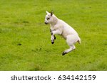 leaping lamb with green...