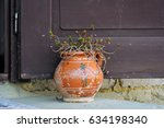Flower In Clay Pot  Sedum...