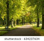 collection of beautiful... | Shutterstock . vector #634237634