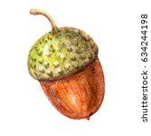cute brown watercolor acorn... | Shutterstock . vector #634244198