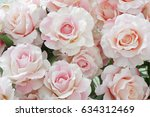 Stock photo pink rose for backgrounds 634312469