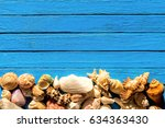 Seashell Background   Assorted...