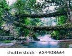 living root bridges of... | Shutterstock . vector #634408664