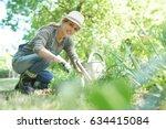 blond woman with hat gardening | Shutterstock . vector #634415084