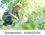 blond woman with hat gardening | Shutterstock . vector #634422314