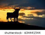 bull sign in the roads of spain.... | Shutterstock . vector #634441544