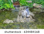 small pond with waterfall in... | Shutterstock . vector #634484168