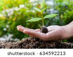 plant on the woman hand for... | Shutterstock . vector #634592213