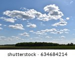 Clouds Above A Grove Of Trees