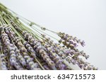 close up of dry lavender flower ... | Shutterstock . vector #634715573