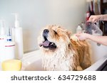chow chow at grooming salon... | Shutterstock . vector #634729688