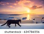 A Black Cat On A Ledge At...
