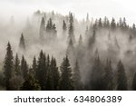 trees and fog in a morning in... | Shutterstock . vector #634806389