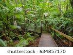 tropical rainforest board walk... | Shutterstock . vector #634857170
