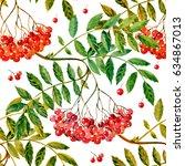 rowan berries medicinal forest... | Shutterstock . vector #634867013