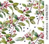 elderberry. medicinal plant of... | Shutterstock . vector #634867019
